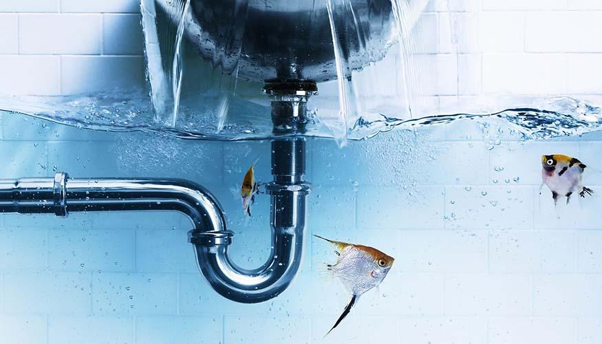 Küçükçekmece Su Tesisatçısı, Küçükçekmece Sıhhı Tesisatçı, Küçükçekmece Su Tesisat Tamiri, Küçükçekmece Su Kaçağı Tespiti, Küçükçekmece Kırmadan Su Kaçağı