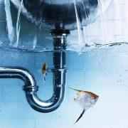 Esenler Lavabo Tıkanıklığı Açma, Esenler Tıkanıklık Açma, Esenler Kırmadan Tıkanıklık Açma, Esenler Tuvalet Tıkanıklığı Açma