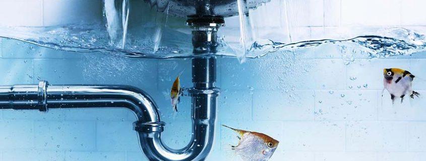 Fatih Su Kaçağı Servisi, Fatih Su Kaçağı Tespiti, Fatih Robotla Su Kaçağı, Fatih Kırmadan Su Kaçağı, Fatih Su Kaçağı Bulma